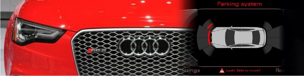 VAG Group OPS and Cobra Flash Mount OE Style Parking Sensors Audi APS, (optical parking sensors) supplied & fitted